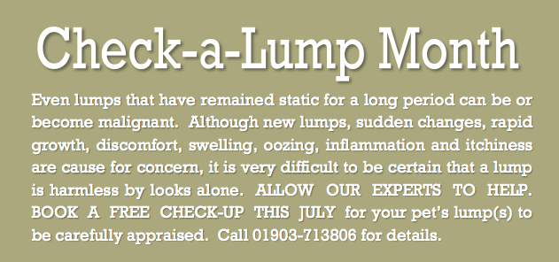 July Offer - Check a lump Month
