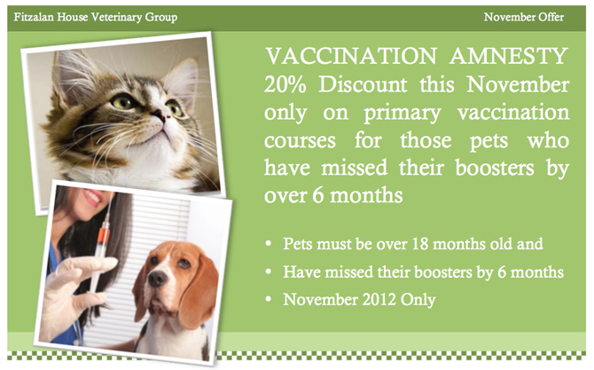 Vaccination Amnesty - 20% discount this November
