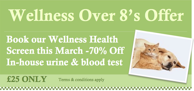Health-Screen-Offer-March-2013