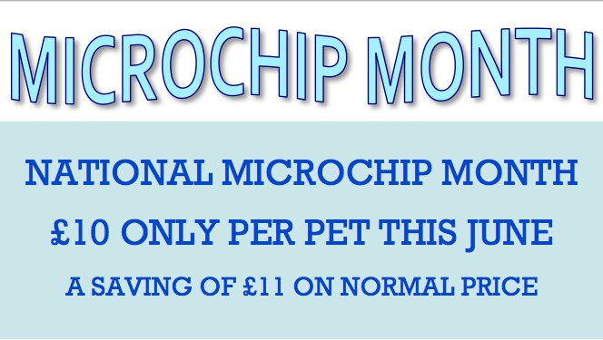 Microchip Month June 2013