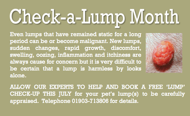 July 13 Check-a-lump