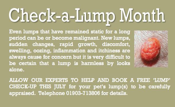 July 13 Check-a-lump