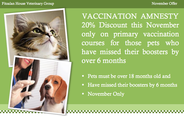 November Offer Vaccine Amnesty