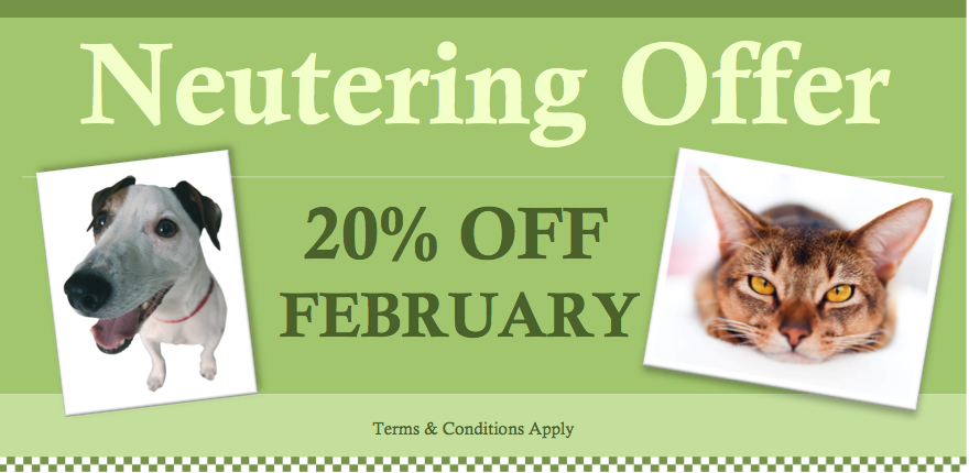 Neutering Offer