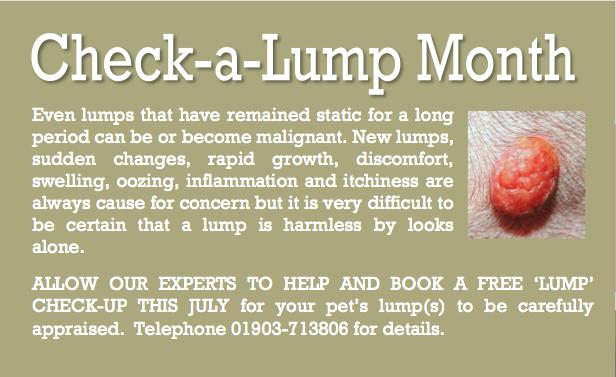 Aug 14 Check-a-lump