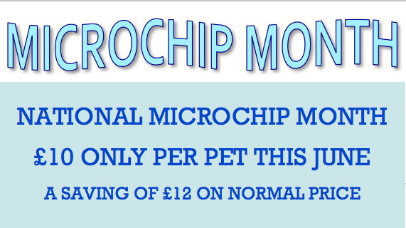 special offer microchip month