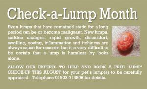 Aug 15 Check-a-lump