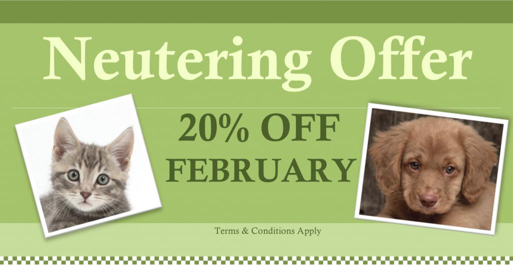 Feb 16 Neutering