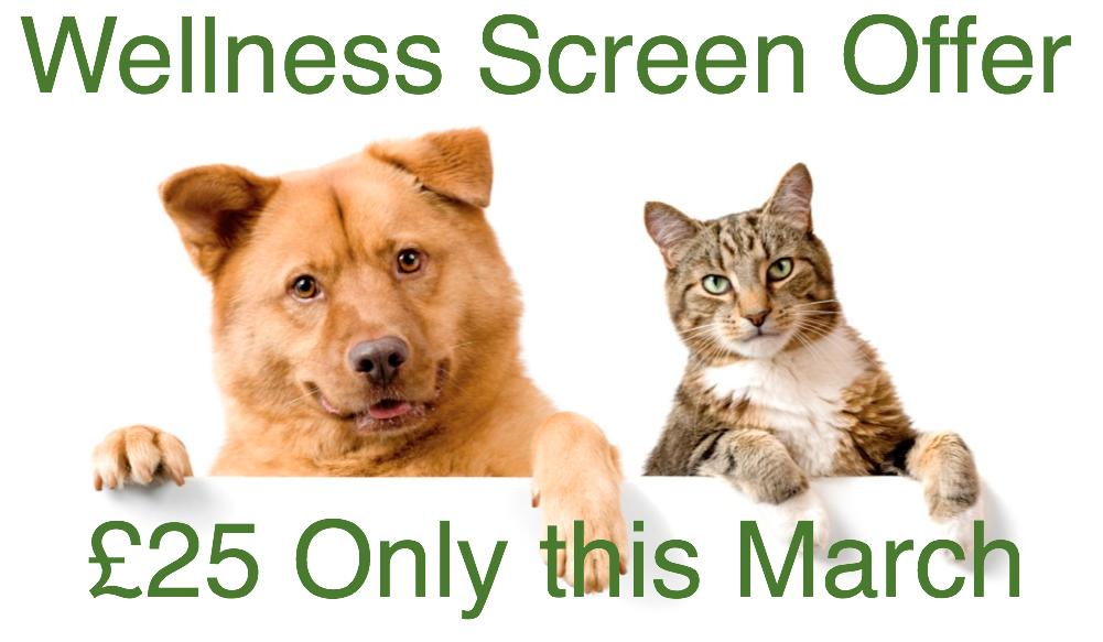 Mar 16 Wellness Screen Offer
