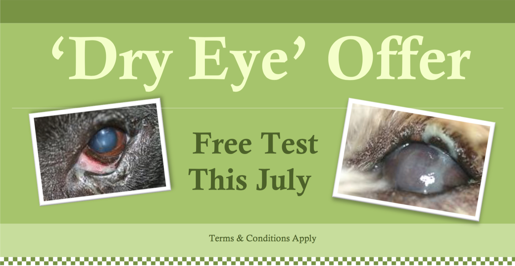 June Offer Microchip