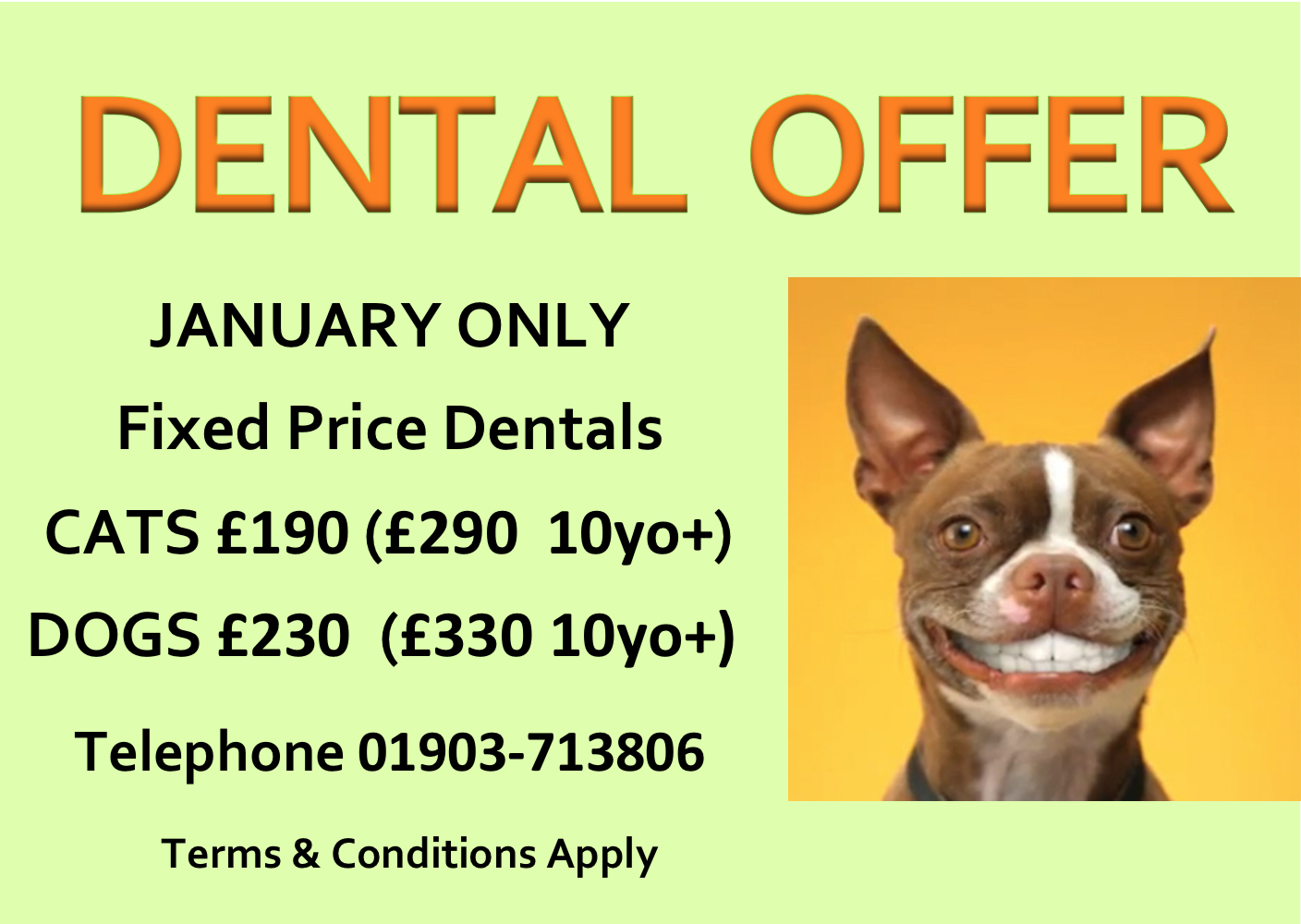Dental Offer 2019