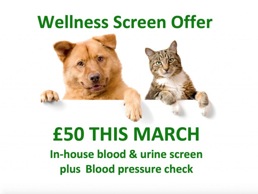 March Wellness Offer